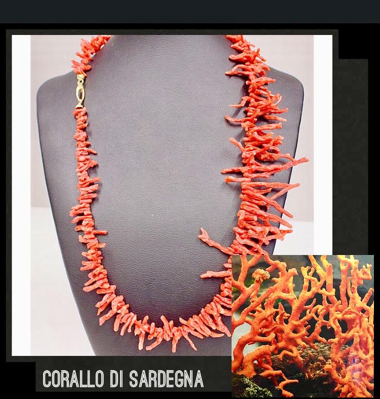 Corallo di Sardegna